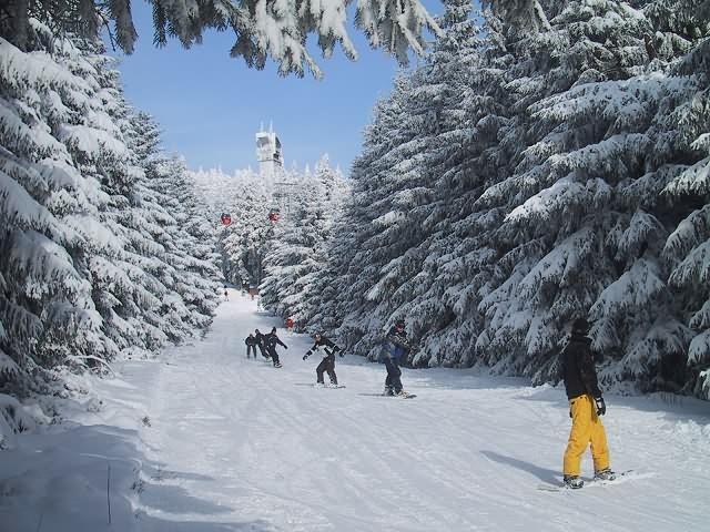 Schneehöhe Harz